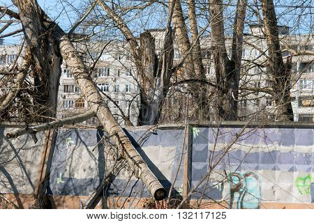 A large tree after a strong wind has fallen on the fence and broke it. In the background the apartment house.