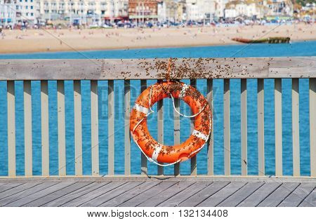 Bees swarm on a life saving ring on the Victorian pier at Hastings in East Sussex, England. The pier re-opened to the public in April 2016 after being closed since 2008.