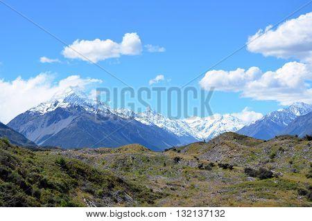 Trees cut down in pristine mountain wilderness