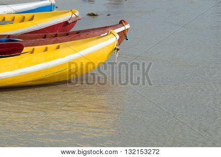kayaks on the beach. kayaking, kayak, sport, water, travel,