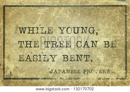 While young the tree can be easily bent - ancient Japanese proverb printed on grunge vintage cardboard