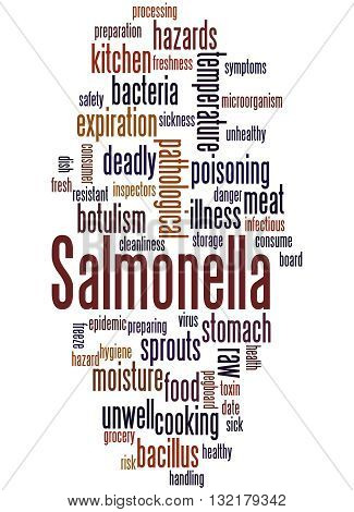 Salmonella, Word Cloud Concept 7