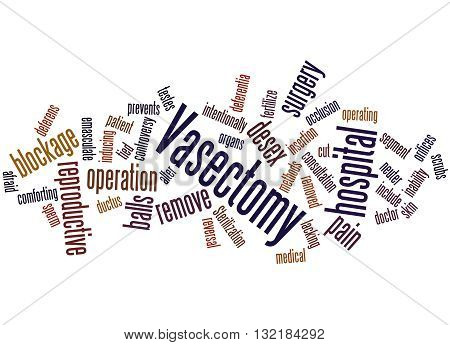 Vasectomy, Word Cloud Concept