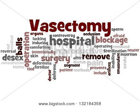 Vasectomy, Word Cloud Concept 2