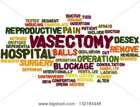 Vasectomy, Word Cloud Concept 3