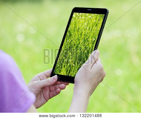 Woman's hands on a screen of a tablet green grass background