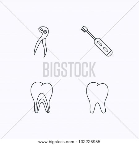 Tooth, electric toothbrush and pliers icons. Dentinal tubules linear sign. Flat linear icons on white background. Vector