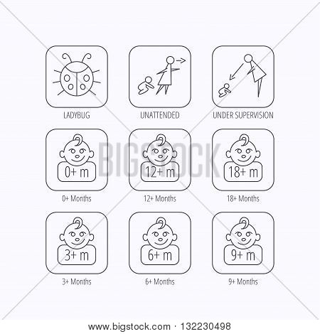 Infant child, ladybug and toddler baby icons. 0-18 months child linear signs. Unattended, parents supervision icons. Flat linear icons in squares on white background. Vector