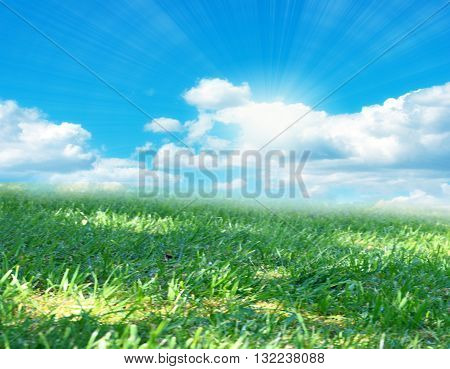 sky and brightly lit by sunlight beautiful meadow