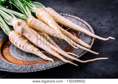 Parsnip. Fresh parsnip. Parsnip with parsley on concrete board. Several fresh parsnip pieces with parsley top. Parsley herbs. Fresh vegetable.
