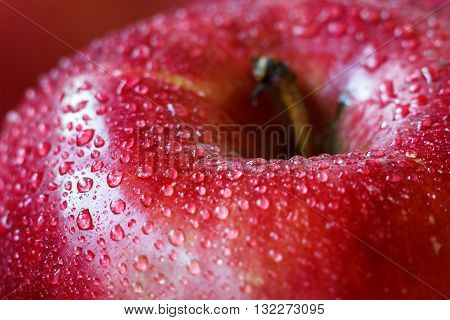 Macro of fresh red wet apple with water drops. Selective focus.
