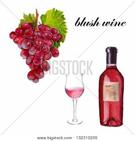 blush wine A bottle a glass of wine and a bunch of red grapes. isolated. Avarelnaya illustration.