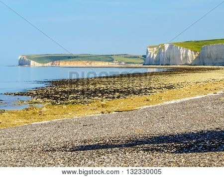 Seven Sisters National Park view of the cliffs and the beach on a low tide. East Sussex, England poster