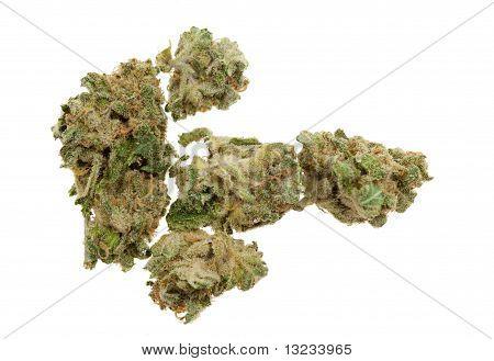 Close Up Of Marijuana (cannabis)