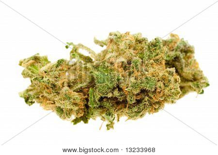Close Up Of Marijuana (cannabis)