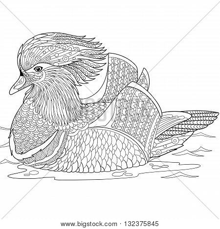 Zentangle stylized cartoon mandarin duck isolated on white background. Hand drawn sketch