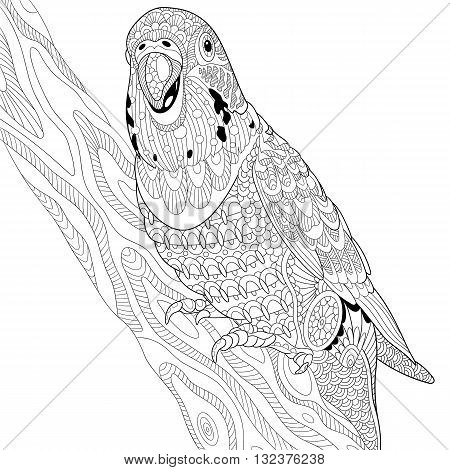 Zentangle stylized cartoon budgie parrot sitting on tree branch. Hand drawn sketch for adult antistress coloring page T-shirt emblem logo or tattoo with doodle zentangle floral design elements.
