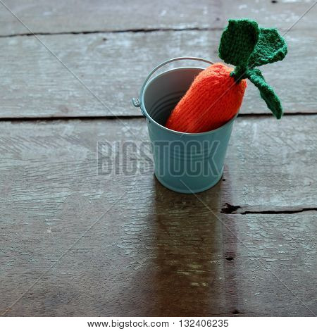 Knitted Carrot, Funny Diy