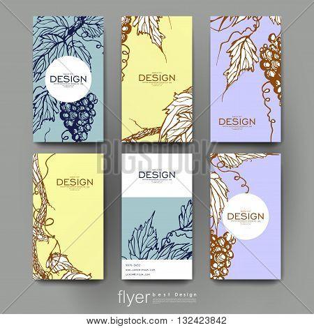 grapes ornament vector brochure template. Flyer Layout. Creative modern design
