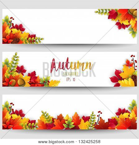 Illustration of Colorful autumn leaves three banners
