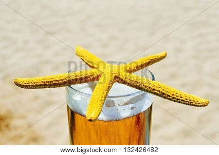 closeup of a yellow starfish on a glass with refreshing beer, on the beach