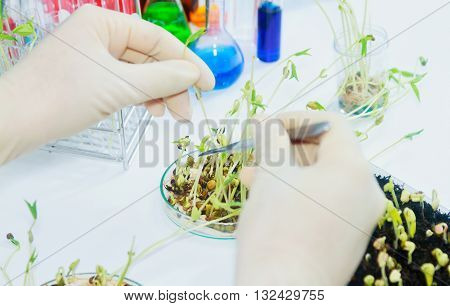 Scientists Working At The Laboratory,scientist Leaning Against The Whiteboard In Laboratory,scientis