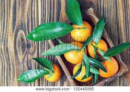Fresh tangerines in rustic wooden plate, top view