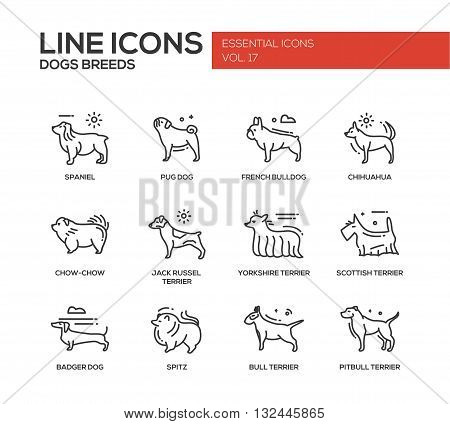 Set of modern vector plain line design icons and pictograms of domestic dogs breeds. Spaniel, french bulldog, chihuahua, chow-chow, jack russel terrier, yorkshire, scottish terrier, badger, spitz, pitbull