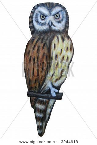 illustration of a tawny owl against a white background. poster
