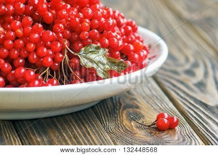 Autumn still life with bunches of viburnum. Fresh juicy ripe viburnum berries in a white plate on wooden background. Selective focus