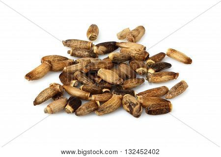 Seeds of a Milk Thistle (Silybum marianumScotch ThistleMarian Thistle).