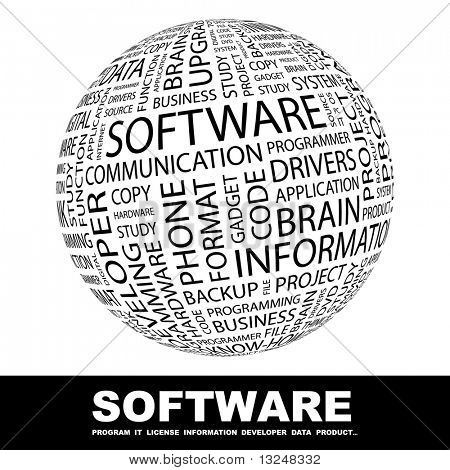 SOFTWARE. Globe with different association terms.