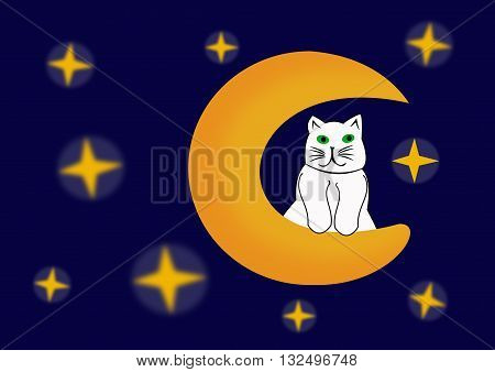 The cat on the moon. Fanciful illustrations.