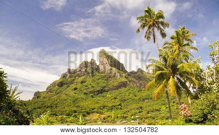 Mount Otemanu wih palm trees in Bora Bora French Polynesia