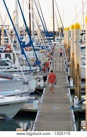 Mooring Docks At Marina