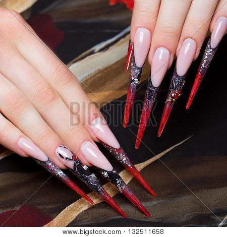 Long beautiful manicure on the fingers in black and red colors with a spider. Nails design. Picture taken in the studio on a white background.