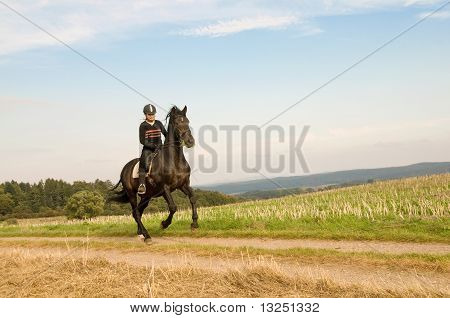 Equestrienne rides at a gallop on a brown horse. poster