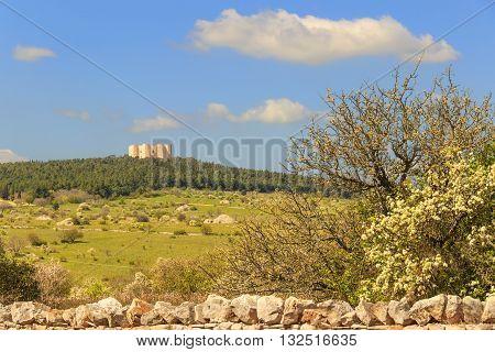 Spring landscape: Alta Murgia National Park.In the background Castel del Monte.Apulia-ITALY(Andria)-