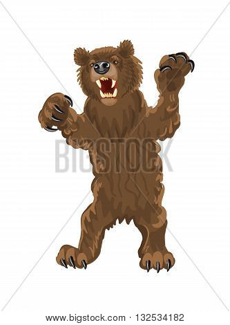 Brown bear stands on its hind legs. Bear with open mouth fangs and large claws. Snarling aggressive grizzly bear vector illustration on a white background.
