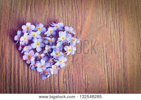 Forget-me-nots flowers in shape of heart on wooden backgroud