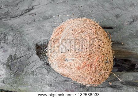 Top view Coconut shuck blur background Wood floor. (select focus Coconut)