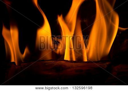 Close up of feathery orange flames in a fireplace. Long exposure image so the flames look soft.