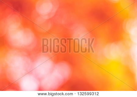 Blurred nature background.Backdrop with color and bright sun light. Summer holidays concept.bokeh background or Christmas background.Green Energy.