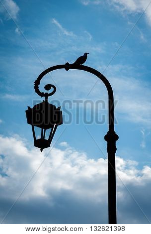 Seagull sitting on the streetlight against the sky