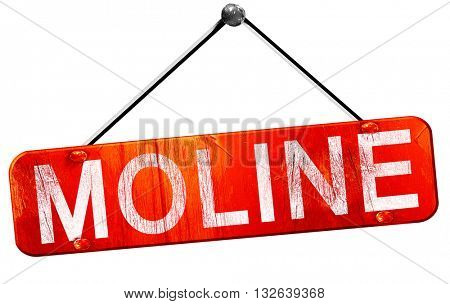 moline, 3D rendering, a red hanging sign