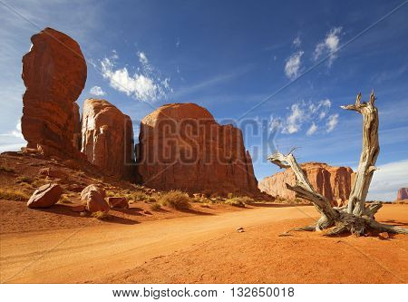 dead trunk and red rock formation in monument valley
