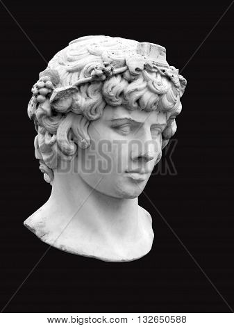 The head of Antinous in the guise of Bacchus on a black background. Marble bust of the Greek youth in the Private Garden of Pavlovsk