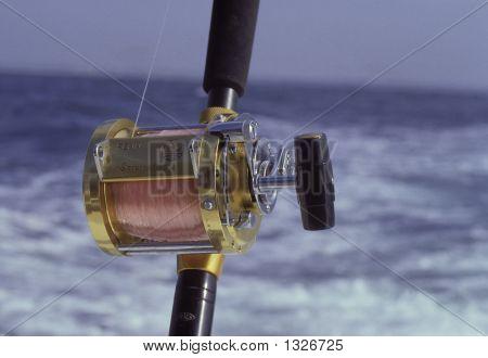 Saltwater Reel