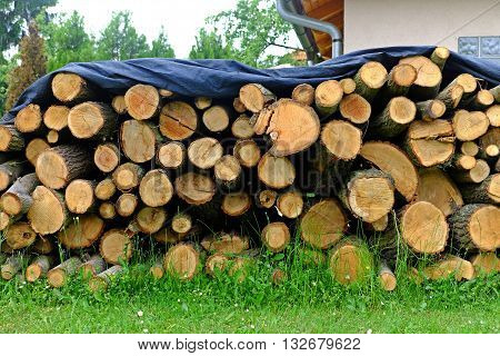 Pile of sawn oak wood of the covered tarp against rain heating cold