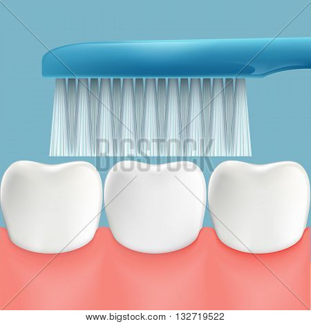 Human teeth and toothbrush. Oral hygiene. Stock Vector illustration.
